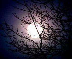 Moon01998jpg